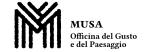 Museo Salterio (Musa)